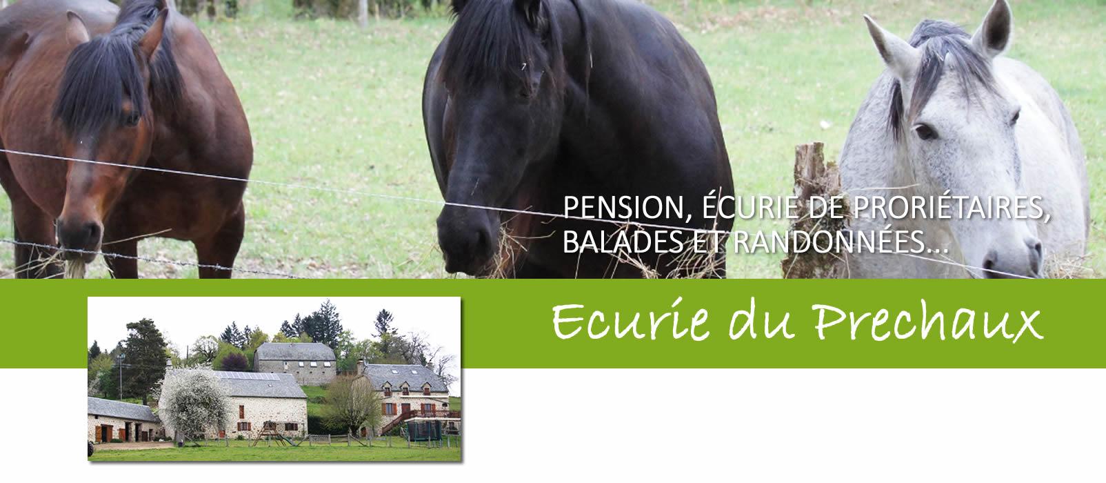 Photo partenaire - Ecurie du Prechaux - Centre équestre - Bienvenue à la Vérénerie -  Chambres et table d'hôtes