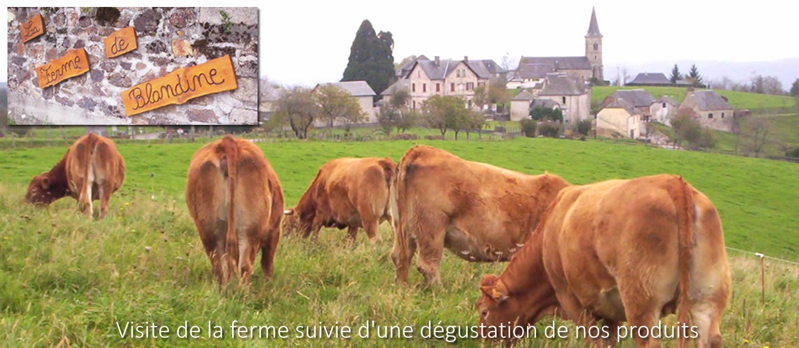 Photo partenaire - La ferme de Blandine - Ferme élevage pédagogique -  Chambres et table d'hôtes